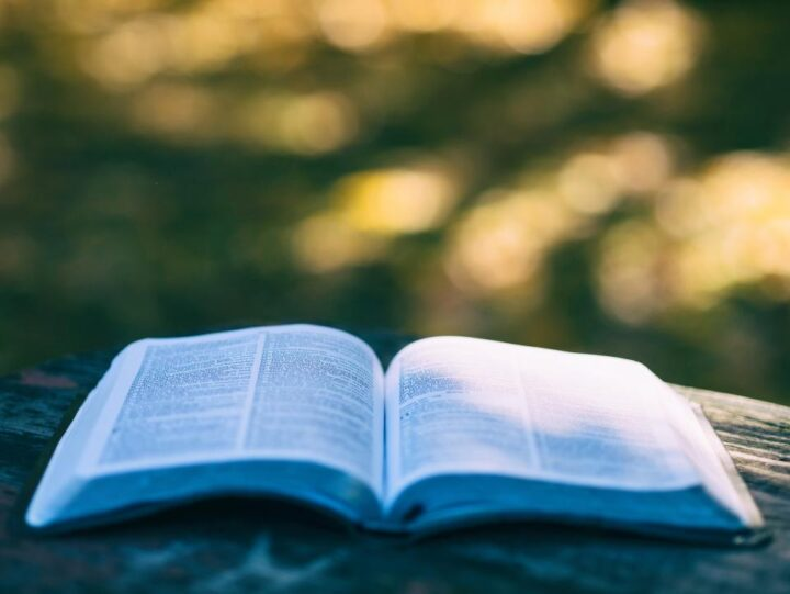 Open bible outside with sunshine and shadow on it